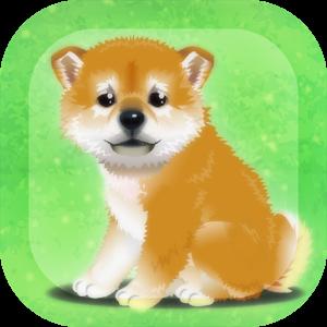 柴犬育成:癒しの子犬育成ゲーム〜柴犬編〜 2.2